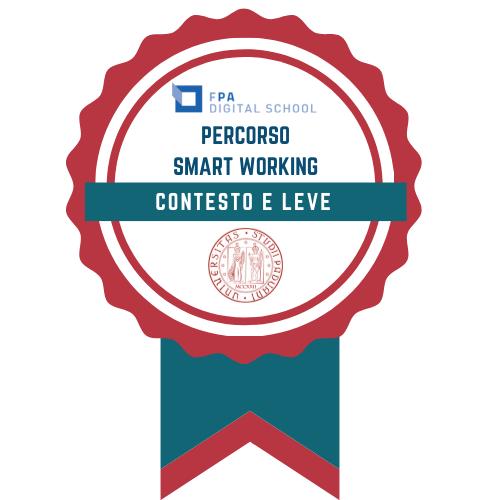 Smart Working   Contesto e leve progettuali per il cambiamento organizzativo delle PA